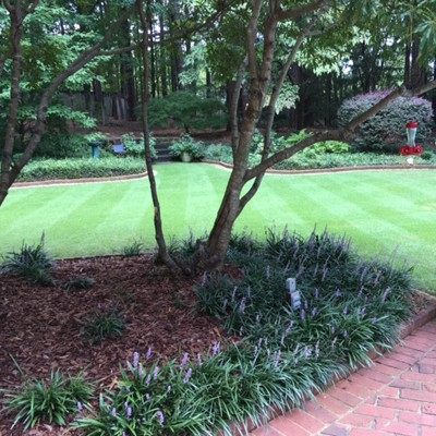 Zoysia Turf cared for by Maxham Farms